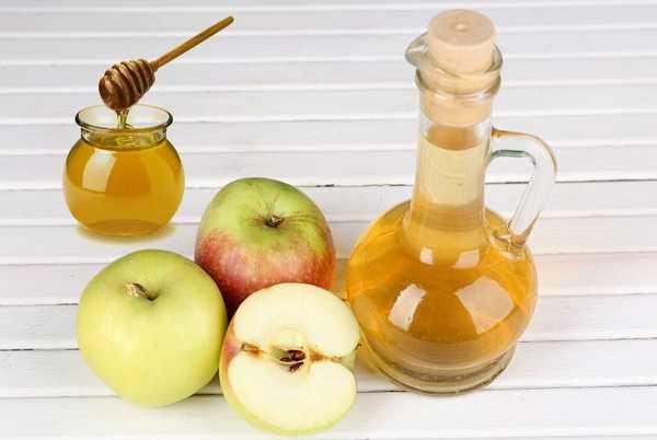 Лечебные свойства меда с яблочным уксусом и чесноком